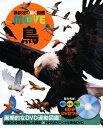 DVD付 鳥 (講談社の動く図鑑MOVE) [ 川上和人 ]