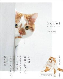 どんころり [ 井上佐由紀 ]