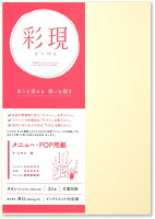 PCM竹尾 プリンタ用紙 彩現 メニュー・POP用 A4 リ・シマメ 白 1742186