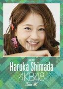 (卓上) 島田晴香 2016 AKB48 カレンダー