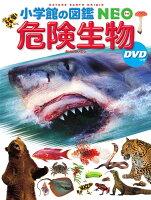危険生物 DVDつき