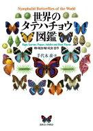 世界のタテハチョウ図鑑