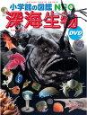 深海生物 DVDつき (小学館の図鑑NEO) [ 藤原 義弘 ]