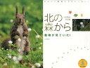 【送料無料】動物が見ていた!北の森からカレンダー(2013)
