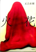 「火花 Ghost of the Novelist」