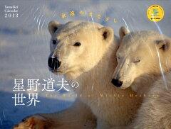 【送料無料】星野道夫の世界 永遠のまなざし 2013 カレンダー [ 星野道夫 ]