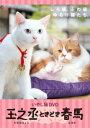 いやし猫 DVD 猫侍 玉之丞ときどき春馬 [ (趣味/教養) ]
