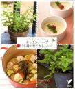 【送料無料】キッチンハーブ26種の育て方&レシピ