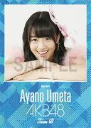 (卓上) 梅田綾乃 2016 AKB48 カレンダー
