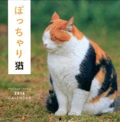 【楽天ブックスならいつでも送料無料】ぽっちゃり猫カレンダー(2016)