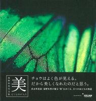 【バーゲン本】むしものがたり 美ー海野和男写文集