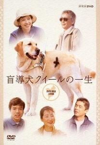 【送料無料】盲導犬クイールの一生 DVD BOX [ 沢口 靖子[主演] ]