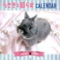 うさぎと暮らすカレンダー(壁掛け)
