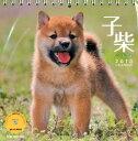 【送料無料】子柴 卓上カレンダー 2013 [ 植木裕幸 ]