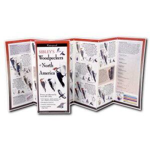 Sibley's Woodpeckers of North America SIBLEYS WOODPECKERS OF NORTH A (FoldingGuides) [ David Sibley ]