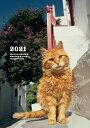 岩合光昭 ねこ diary &schedule 2021 [ 岩合光昭 ]