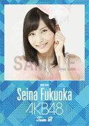 (卓上) 福岡聖菜 2016 AKB48 カレンダー