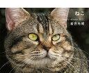 岩合光昭 ねこ weekly calendar 2021 [ 岩合光昭 ]の商品画像
