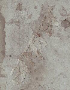椎名林檎と彼奴等の居る真空地帯【Blu-ray】画像