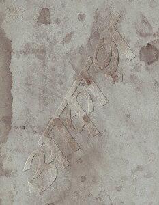椎名林檎と彼奴等の居る真空地帯画像