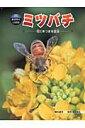 【送料無料】ミツバチ