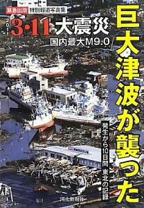 【送料無料】巨大津波が襲った