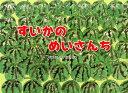 すいかのめいさんち (チューリップえほんシリーズ) [ 平田...