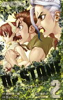 Dr.STONE 2 (ジャンプコミックス) [ Boichi ]