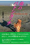 【送料無料】命のバトンタッチ [ 今西乃子 ]