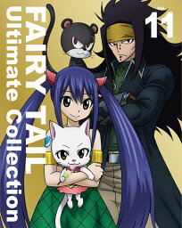 FAIRY TAIL Ultimate Collection Vol.11