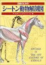 美術のためのシートン動物解剖図