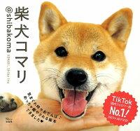 柴犬コマリ @shibakoma