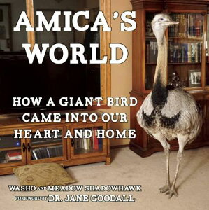 Amica's World: How a Giant Bird Came Into Our Heart and Home AMICAS WORLD [ Washo Shadowhawk ]