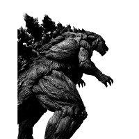 S.H.MonsterArts ゴジラ(2017) - 初回生産限定版 -