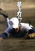 夢を力に! 甲子園と高校野球隠された心の物語 (日刊スポーツ・ノンフィクション) [ 矢崎良一 ]