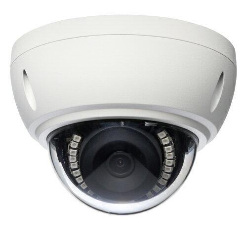 SolidCamera フルHDドーム型 IPネットワークカメラ Viewla IPC-19