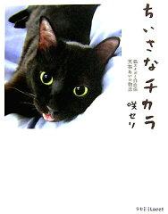 【送料無料】ちいさなチカラ [ 咲セリ ]