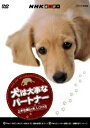 NHK趣味悠々 犬は大事なパートナー 上手な飼い方、しつけ方 [ 藤井聡 ]