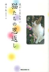 【送料無料】猫たちの恩返し [ 優李阿 ]