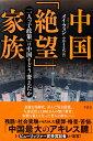 中国「絶望」家族 「一人っ子政策」は中国をどう変えたか [ メイ・フォン ]