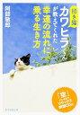 招き猫カワヒラくんが教えてくれた幸運の流れに乗る生き方 [ 阿部敏郎 ] - 楽天ブックス