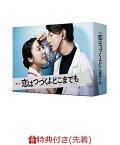 【先着特典】恋はつづくよどこまでも DVD-BOX(A5クリアファイル)