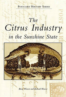 The Citrus Industry in the Sunshine State画像
