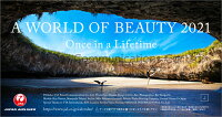 JAL「A WORLD OF BEAUTY」(卓上判)(2021年1月始まりカレンダー)