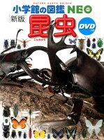 小学館の図鑑NEO〔新版〕 昆虫 DVDつき