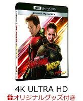 【楽天ブックス限定】アントマン&ワスプ 4K UHD MovieNEX【4K ULTRA HD】+アクリルパネル(台座)+MARVEL台紙+コレクターズカード