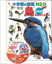 鳥 新版 DVDつき 恐竜の子孫たち (小学館の図鑑NEO)