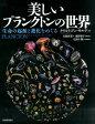 美しいプランクトンの世界 生命の起源と進化をめぐる [ クリスティアン・サルデ ]