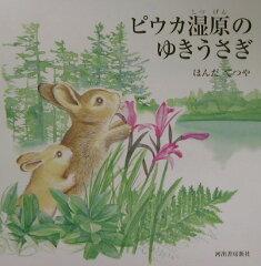 【送料無料】ピウカ湿原のゆきうさぎ