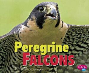 Peregrine Falcons PEREGRINE FALCONS (Birds of Prey) [ Gail Saunders-Smith ]